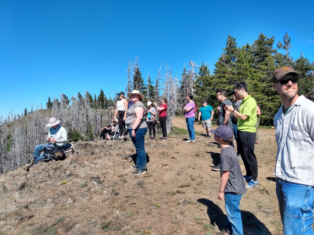 Forest Hike with Residents 2020